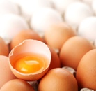 Egg allergy from vaccines using egg proteins