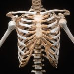 natural approach to bone health