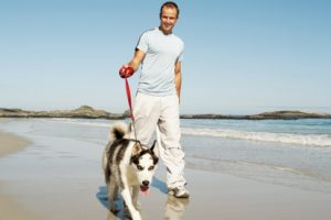 Simple tips to avoid infections from pets