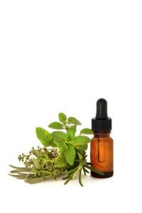 Is oregano oil effective?