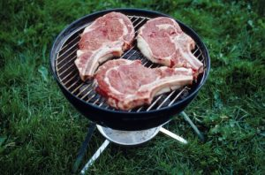 Danger: High Protein Diets As Harmful As Smoking
