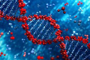 genetic, health