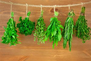Herbs for boosting brain power and stopping memory loss
