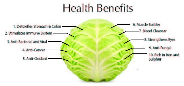 cabbage and bone health