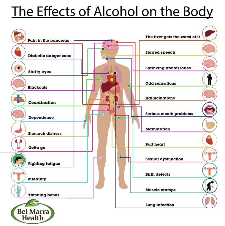 Alcohol-body-chart