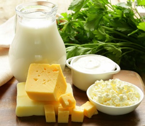 Role of nutrition in preventing osteoporosis