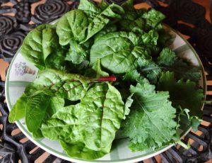 green leafy better then kale