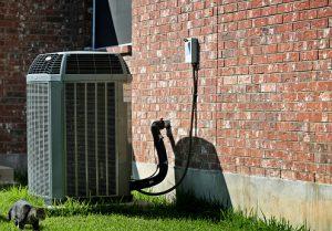 summer heat and illness