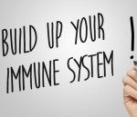 Sugar key to how antibodies work in the immune system