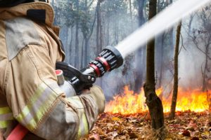 effects of wildfires on heart health