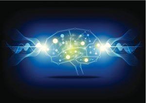 brain signaling