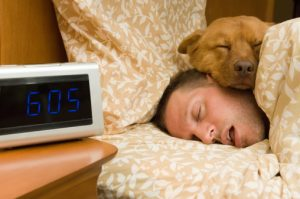 Deep sleep may strengthen immune system memory of antigens