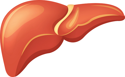 Diabetics unaware of potential liver disease