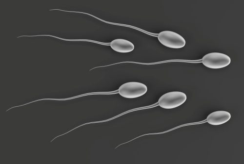 Low sperm mobility linked with common chemical exposure