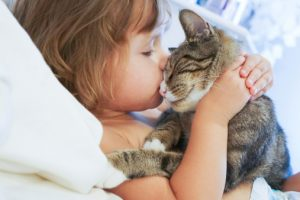 Toxoplasma gondii in pet cats can affect your brain