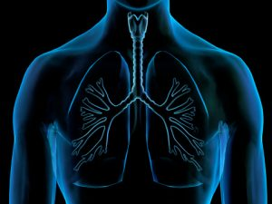 Difference in chronic bronchitis and emphysema symptoms