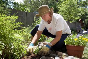 Women on long-term sick leave return back to work with gardening therapy