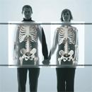 strenghten-your-bones1