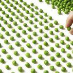 Obsessive-compulsive disorder (OCD) questionnaire