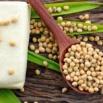 soya bean protects against osteoporosis