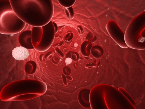Cell damage caused by iron in the blood