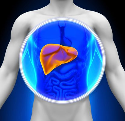 Enlarged liver hepatomegaly