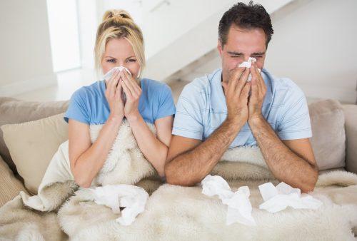 Influenza 1026 update