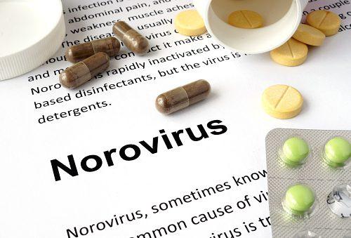 Norovirus 2016 outbreak