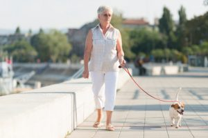 Seniors' health benefits from owning a dog