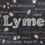 Lyme disease can be detected early by urine test: New study
