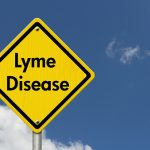 lyme disease inflammation