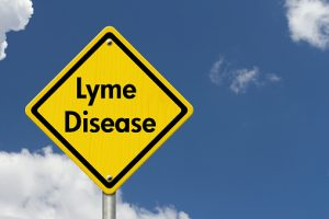 Lyme disease-induced inflammation causes nervous system changes
