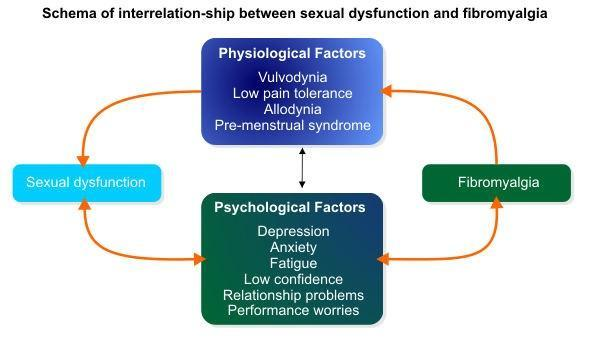 Link between sexual functions in women with fibromyalgia