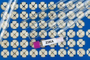 Zika virus update 2016: Scientists track mosquitoes by county, inheritable bacterium controls mosquito's ability to transmit Zika