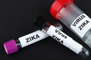 lyme disease vs. zika virus