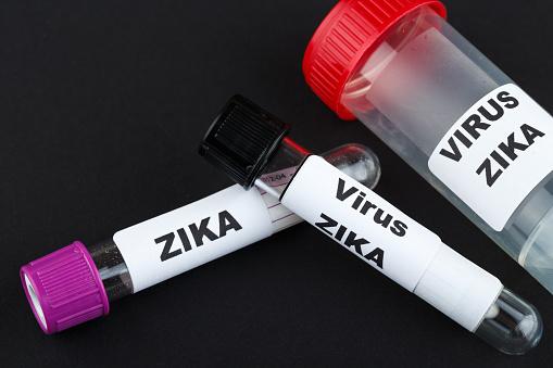lyme disease vs. zika virus
