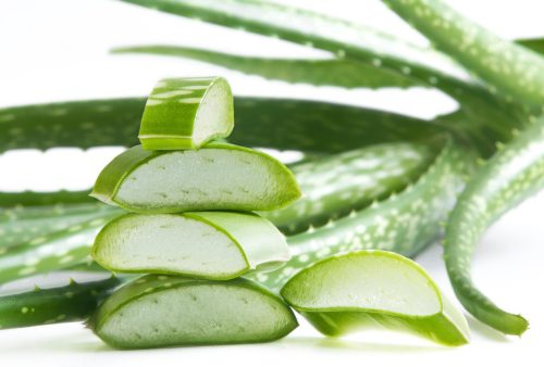 how to get rid of scabies aloe vera