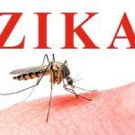 zika-virus-300x225