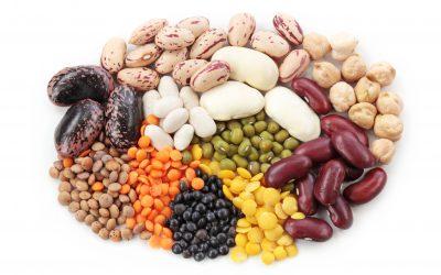 beans legumes in diet help prevent colon polyps