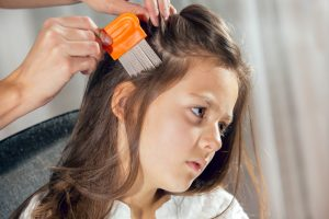 'Superlice' found to be resistant to many over-the-counter remedies
