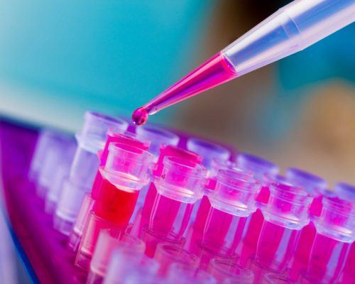 Combination of three drugs may help better treat myeloma