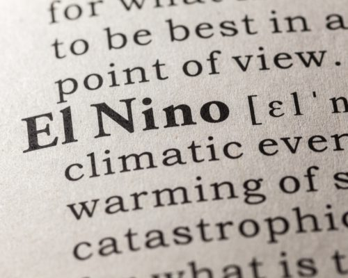 Lyme disease cases may rise as a result of El Nino