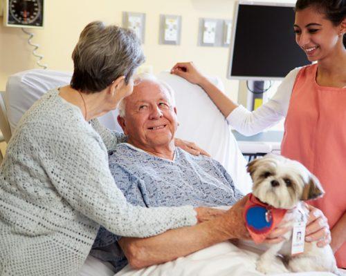stroke recovery rehabilitation
