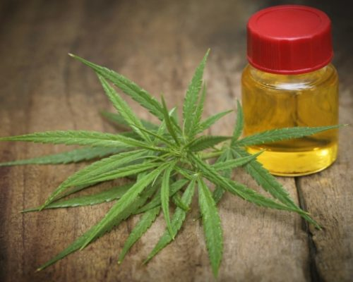 Severity and frequency of epileptic seizures can be lowered with cannabidiol oil