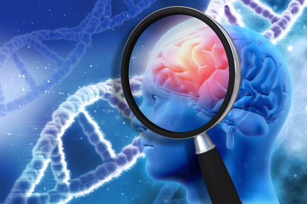 Early signs of Alzheimer's disease affecting memory formation and information processing: Study