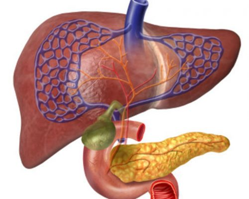 non-alcoholic-fatty-liver-disease-nafld-treatment