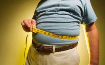 Brain hormone found to trigger fat burn