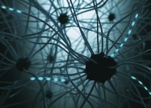 cell-in-the-brain-that-may-help-treat-neurological-diseases