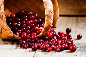 cranberries-bladder-health-uti