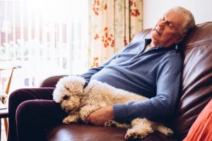 Cognition in older adults improved with moderate post-lunch napping: Study